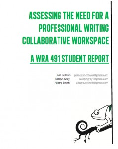 pw_report_cover